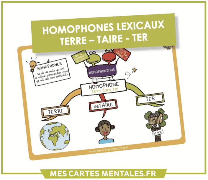 Homophone lexical Terre