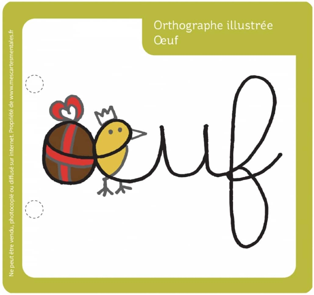 Orthographe illustree-oeuf